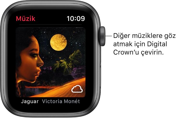 Müzik uygulamasında bir albümü ve resmini gösteren ekran.