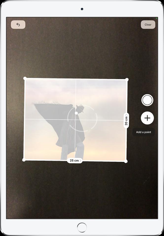 Фотография върху хартия, която се измерва, като размерите са показана в десния и в долния край. Бутонът Take Picture (Снимка) е близо до средата в десния край. Горе вдясно се появява зеленият индикатор Camera In Use (Камерата се използва).