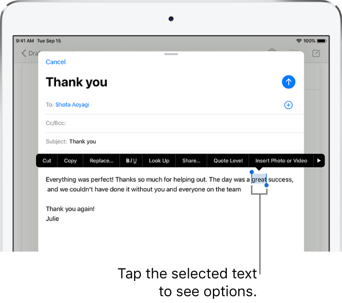 A sample email message with some of the text selected. Above the selection are the Cut, Copy, Paste, and Replace buttons. The selected text is highlighted with handles at either end.