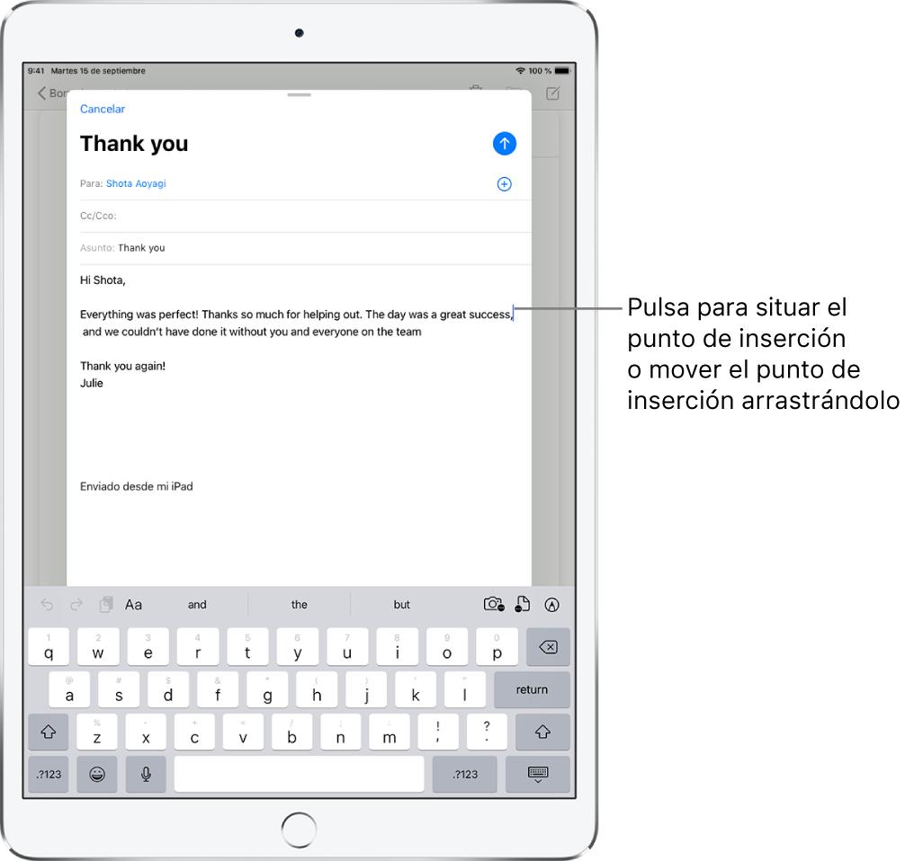 Borrador de correo electrónico, con el punto de inserción donde se insertará el texto.