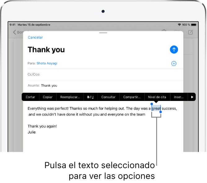 Mensaje de correo electrónico de ejemplo con parte del texto seleccionado. Encima de la selección están los botones Cortar, Copiar, Pegar y Reemplazar. El texto seleccionado está resaltado y presenta tiradores en ambos extremos.