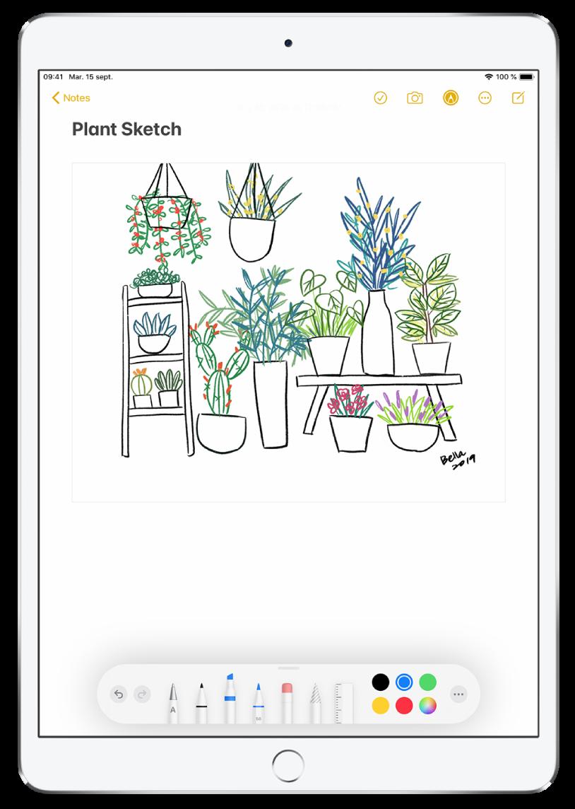 Dessin de plantes dans une note, dans l'app Notes. Le long du bas de l'écran se trouve la barre d'outils d'annotation avec des outils d'écriture et une couleur personnalisée sélectionnés.