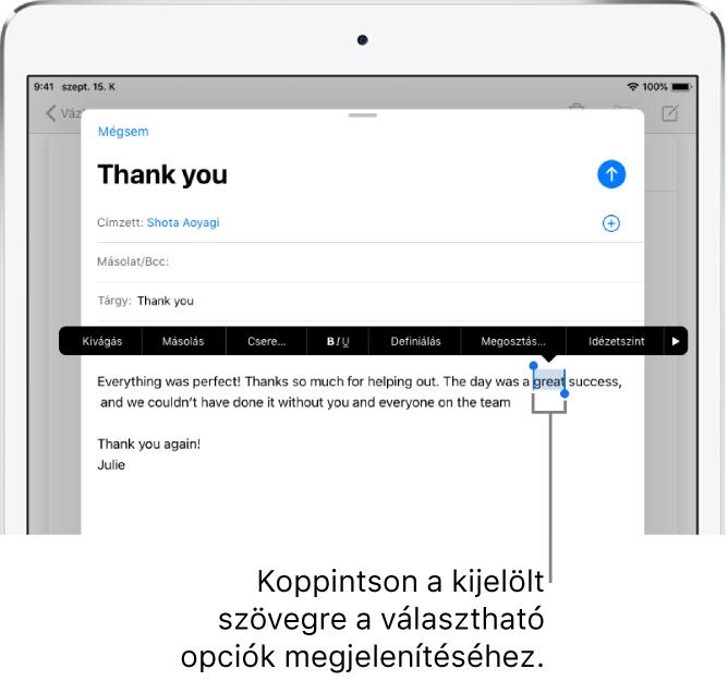 E-mail üzenet, amelyben a szöveg egy része ki van jelölve. A kijelölt szöveg felett a következő gombok láthatók: Kivágás, Másolás, Beillesztés és Csere. A kijelölt szöveg kiemelve látható, mindkét végén fogópontokkal.