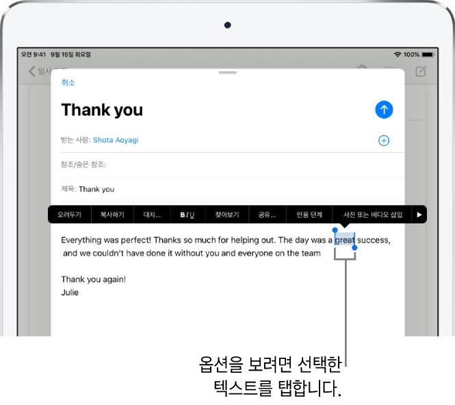 일부 텍스트가 선택되어 있는 예제 이메일 메시지. 선택 부분 위에 있는 오려두기, 복사하기, 붙여넣기 및 대치 버튼. 선택된 텍스트는 강조 표시되며 양단에 핸들이 있습니다.