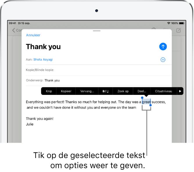 Voorbeeld van een e-mailbericht waarin een stukje tekst is geselecteerd. Boven de geselecteerde tekst zie je knoppen voor knippen, kopiëren, plakken en vervangen. De geselecteerde tekst wordt gemarkeerd, met grepen aan beide uiteinden.