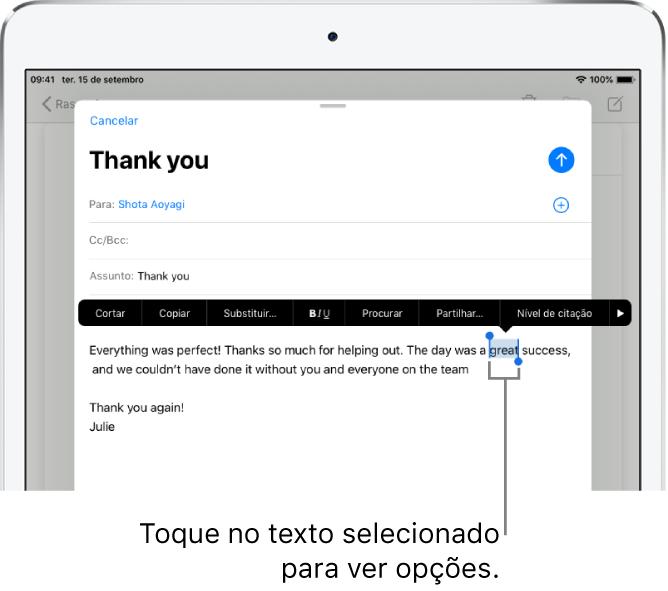 Exemplo de uma mensagem de e‑mail com algum texto selecionado. Acima da seleção estão os botões Cortar, Copiar, Colar e Substituir. O texto selecionado está destacado, com puxadores em ambas as extremidades.