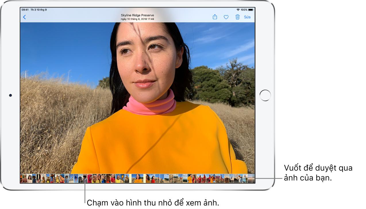 Một ảnh toàn màn hình với hình thu nhỏ của các ảnh khác từ thư viện ở cạnh dưới của màn hình. Ở trên cùng bên trái là nút Quay lại, đưa bạn quay lại màn hình duyệt. Dọc theo trên cùng bên phải là các nút Chia sẻ, Thích, Xóa và Sửa.