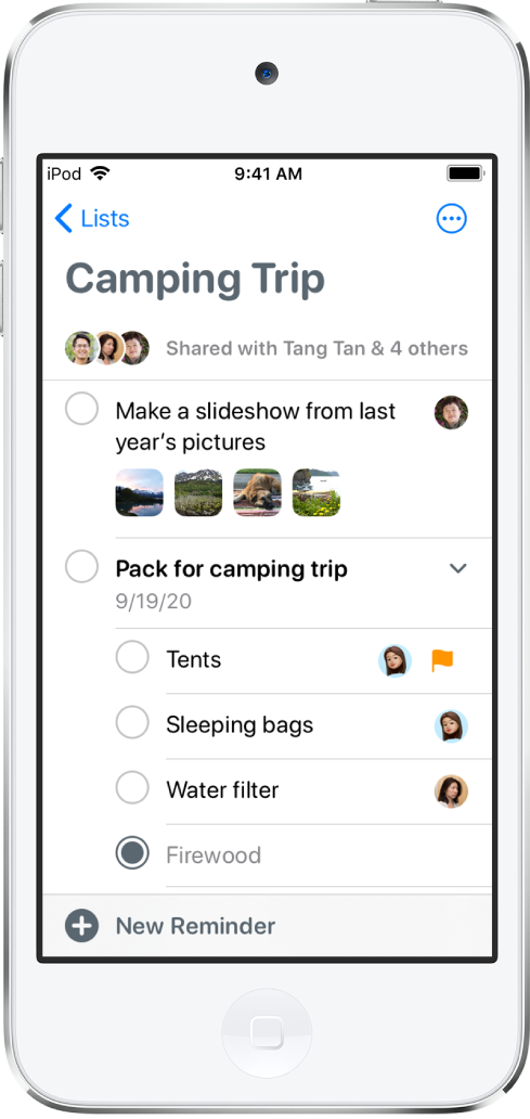 A Reminders screen showing a list of reminders. The New Reminder button is at the bottom left.