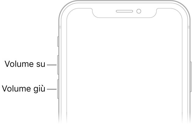 La parte superiore del lato anteriore di iPhone, con i tasti volume in alto, sul lato sinistro.