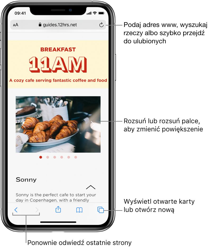 Witryna otwarta woknie Safari; ugóry wyświetlane jest pole adresu. Na dole znajdują się (od lewej) przyciski: powrotu, przejścia do przodu, udostępniania, zakładek istron.