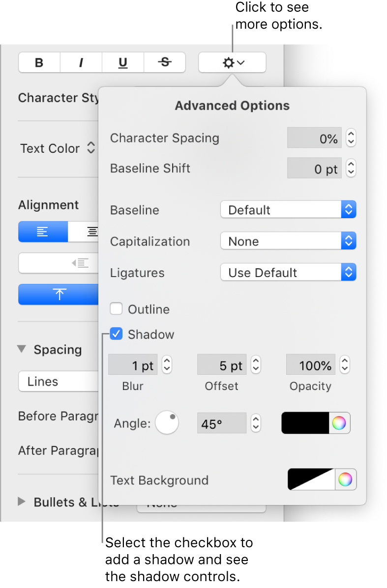 The Advanced Options menu open with the Shadows checkbox selected and controls for setting blur, offset, opacity, angle, and color.