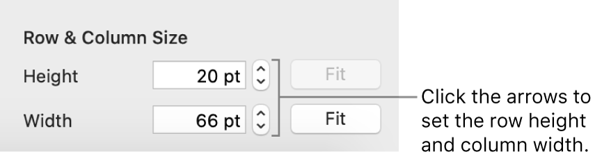 The controls for setting a precise row or column size.