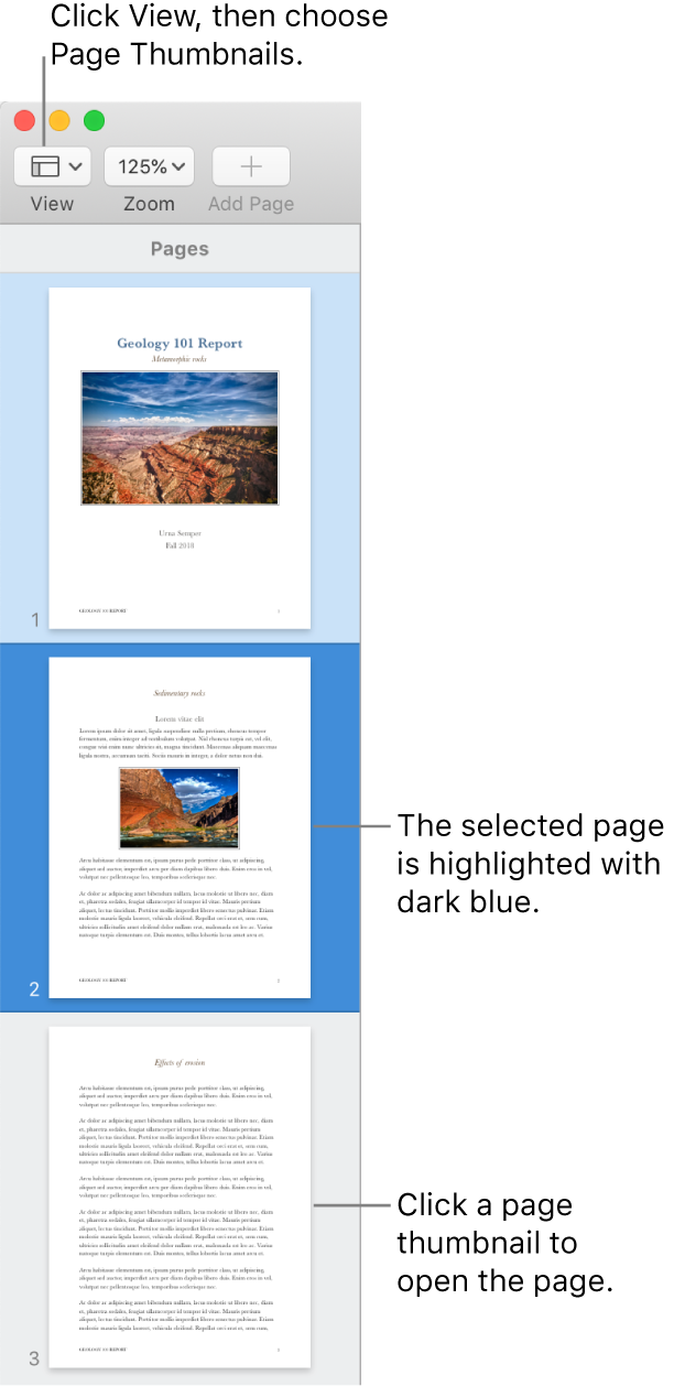 The sidebar on the left side of the Pages window with Page Thumbnails view open and a selected page highlighted in dark blue.
