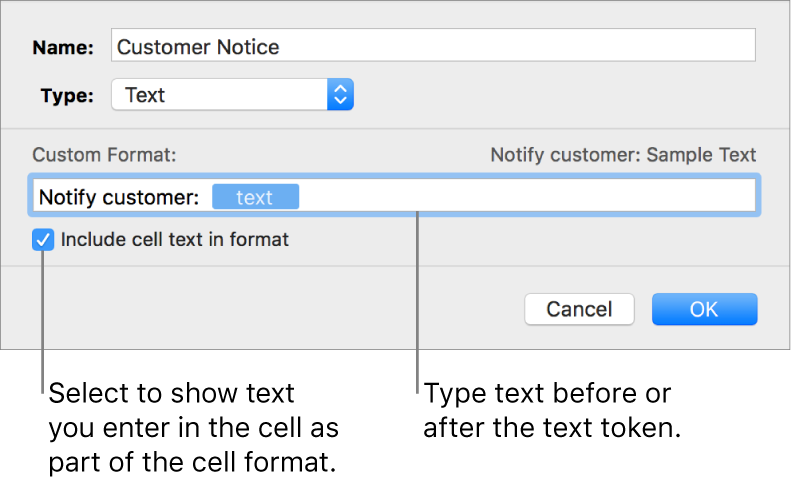 The custom cell format window with controls for choosing custom text formatting.