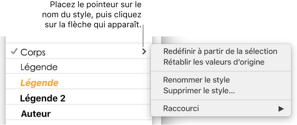Le menu Styles de paragraphe avec le menu contextuel ouvert.