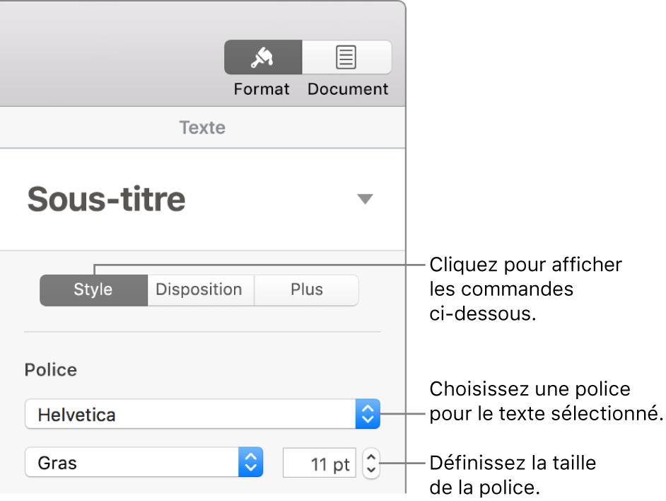 Commande de texte de la section Style de la barre latérale Format, permettant de configurer la police et la taille des caractères.