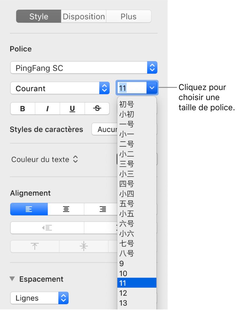 Section Style de la barre latérale Format avec le menu local relatif aux tailles de police ouvert. Les tailles de police standard établies par le gouvernement de la Chine continentale apparaissent en haut du menu local, et les tailles des points s'affichent en dessous.