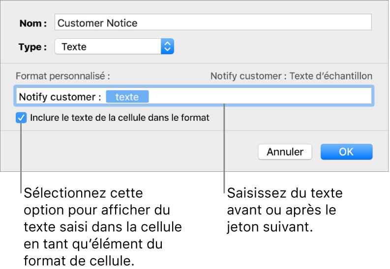 Fenêtre de format de cellule personnalisé présentant les commandes permettant de choisir un format de texte personnalisé.