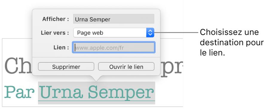 La fenêtre surgissante «Réglages du lien» avec les champs Affichage, Lien vers (défini sur «Page web») et Lien. Les boutons Supprimer et «Ouvrir le lien» se trouvent au bas des commandes.