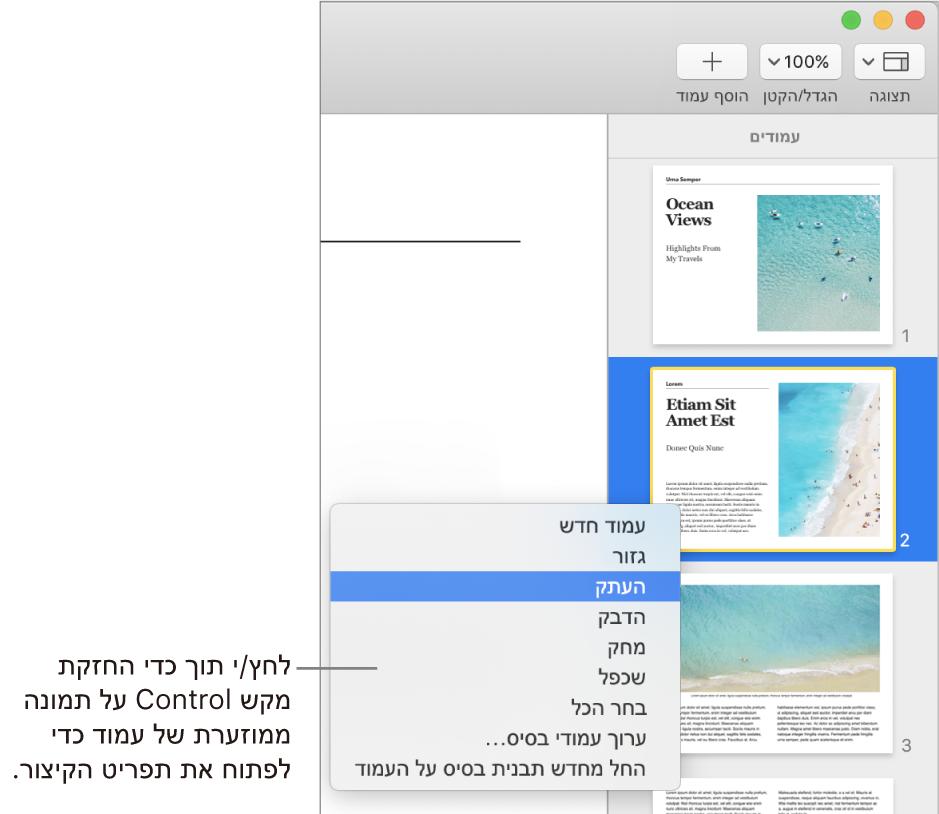 התצוגה ״תמונות ממוזערות של עמודים״ עם תמונה ממוזערת אחת נבחרת ותפריט הקיצור פתוח.