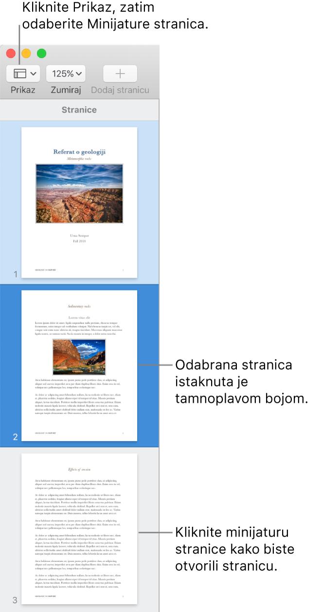 Rubni stupac s lijeve strane prozora aplikacije Pages s otvorenim prikazom minijatura stranica i odabranom stranicom označenom tamnoplavom bojom.