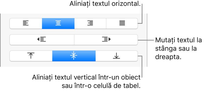 Secțiunea Aliniere a inspectorului Format cu butoane pentru alinierea orizontală și verticală a textului și butoane pentru mutarea la stânga sau la dreapta a textului.