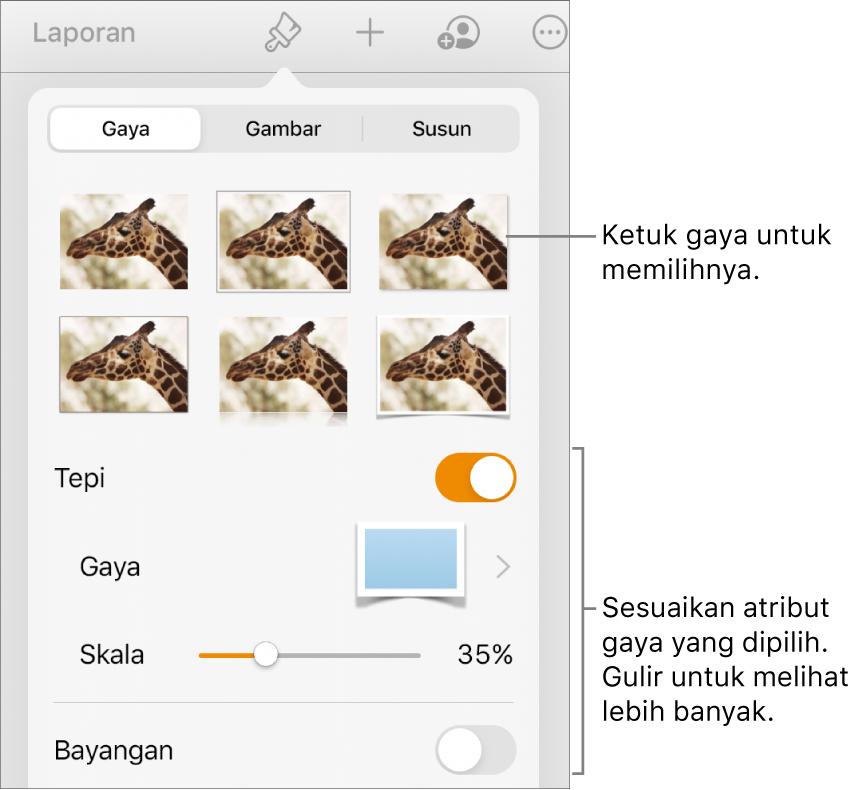 Tab Gaya menu Format dengan gaya objek di bagian atas dan kontrol di bawahnya untuk mengubah tepi, bayangan, refleksi, dan opasitas.