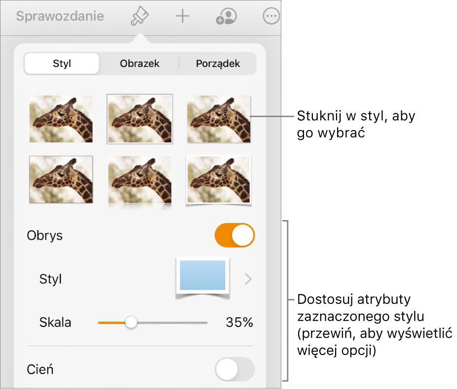 Karta Styl wmenu Format, zawierająca na górze style obiektów, aponiżej narzędzia pozwalające na zmienianie obrysu, cienia, odbicia ikrycia.