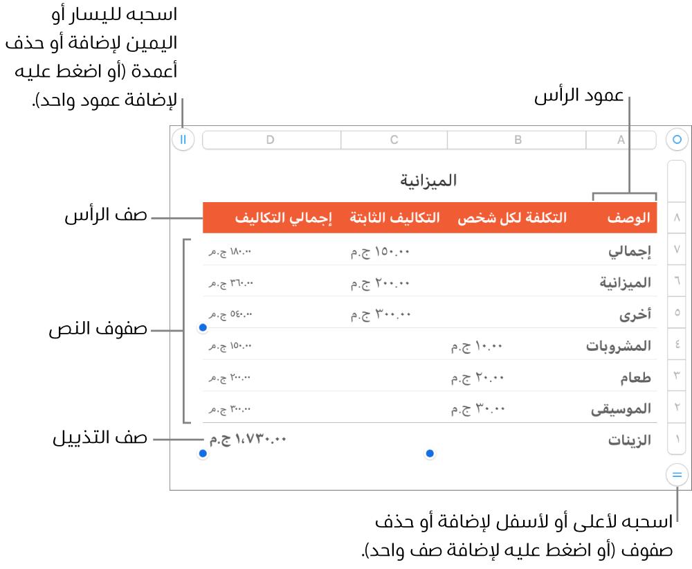 جدول يعرض أعمدة وصفوف الرأس، والمحتوى، والتذييل، والمقابض لإضافة الصفوف والأعمدة أو حذفها.