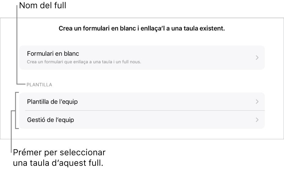 Una llista de taules que són al mateix full de càlcul, amb l'opció per crear un formulari en blanc a la part superior.