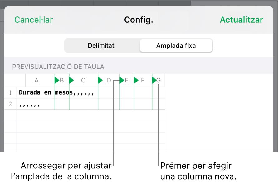 Els paràmetres d'importació d'un arxiu de text d'amplada fixa.