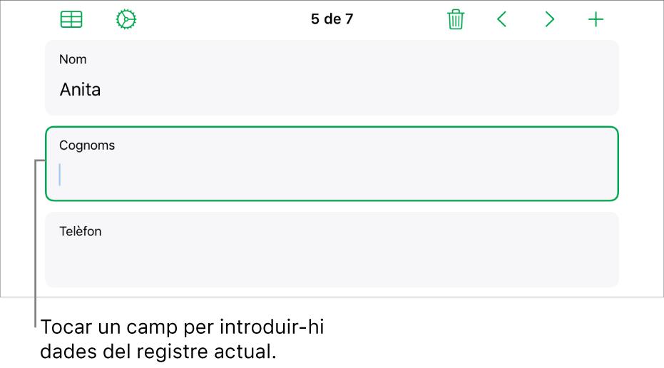 Un registre d'un formulari en què es mostra un camp actiu amb un punt d'inserció.