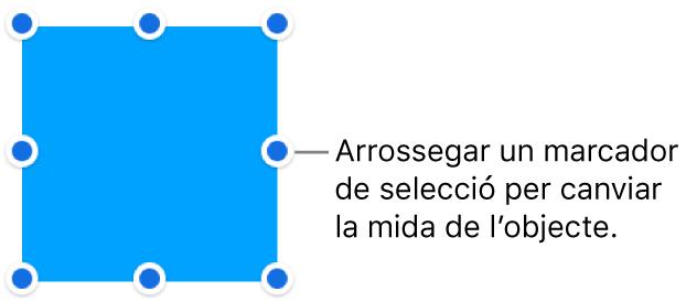 Un objecte amb punts blaus a la seva vora per canviar la mida de l'objecte.