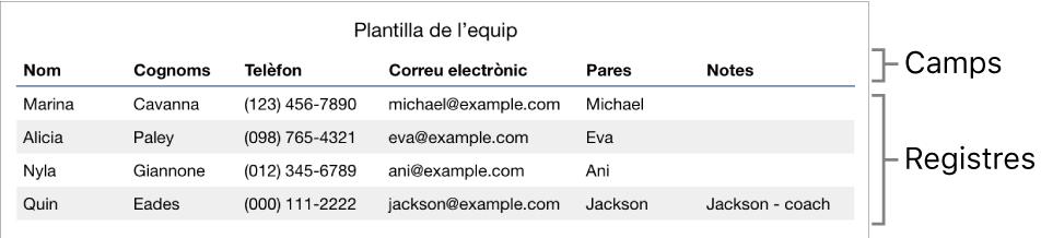 Una taula configurada correctament per utilitzar-la amb formularis, amb una fila de capçalera que conté les etiquetes de camp i una llista de registres que inclou informació de contacte d'una llista d'equips esportius.