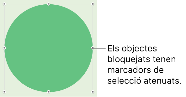 Un objecte bloquejat, amb els marcadors de selecció atenuats.
