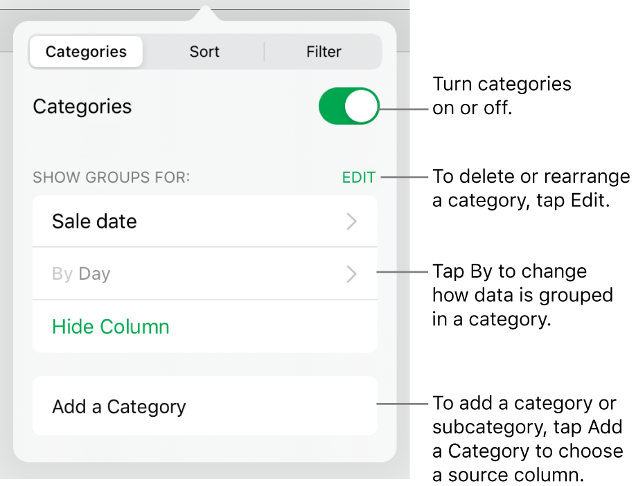 The Categories menu for iPad with options for turning categories off, deleting categories, regrouping data, hiding a source column and adding categories.