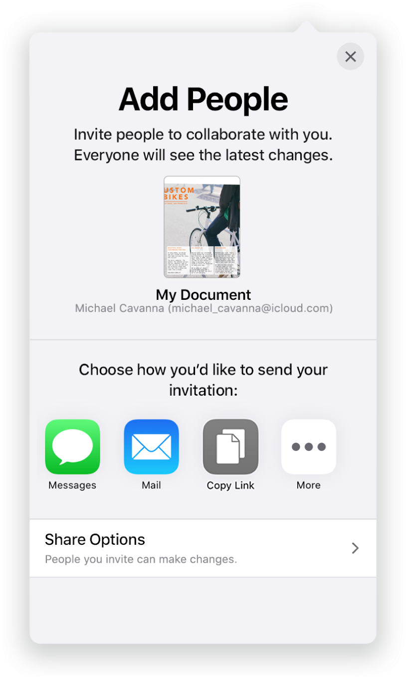 The Add People screen showing a picture of the spreadsheet to be shared. Below it are buttons for ways to send the invitation, including Mail, a Copy Link, and More. At the bottom is the Share Options button.