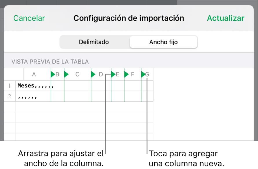 La configuración de importación de un archivo de texto de ancho fijo.
