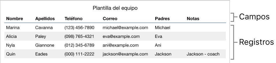 Tabla correctamente configurada para usarla con formularios, con una fila de encabezado donde figuran los campos del formulario, una lista de registros con información de contacto de una lista de un equipo deportivo.