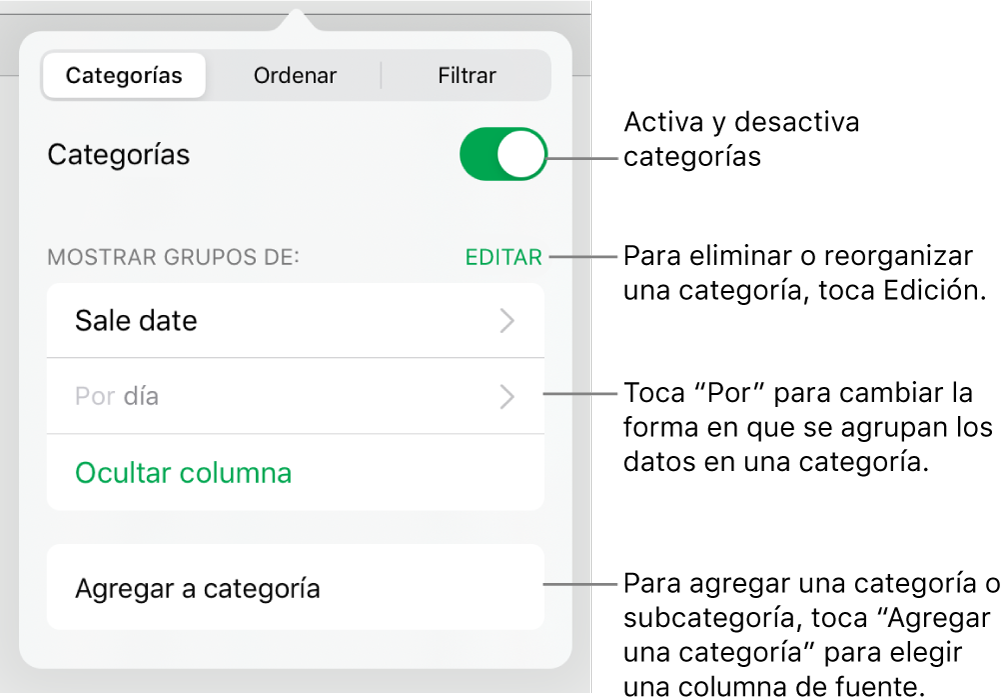 El menú Categorías del iPad con opciones para desactivar las categorías, eliminar categorías, reagrupar datos, ocultar una columna origen y agregar categorías.