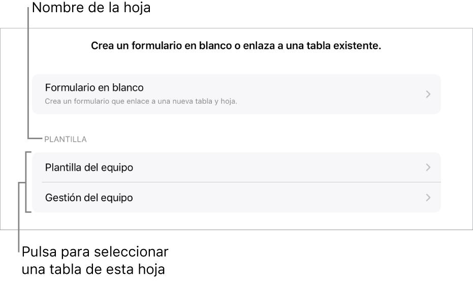 Una lista de tablas pertenecientes a la misma hoja de cálculo, con la opción de crear un formulario en blanco en la parte superior.