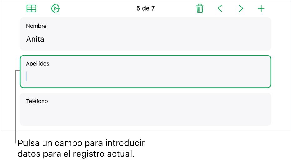 Un registro de un formulario, con un campo activo con un punto de inserción.