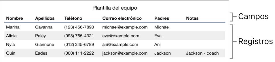 Tabla correctamente configurada para usarla con formularios, con una fila de cabecera donde figuran las etiquetas de los campos y una lista de registro con datos de contacto de los integrantes de un equipo deportivo.