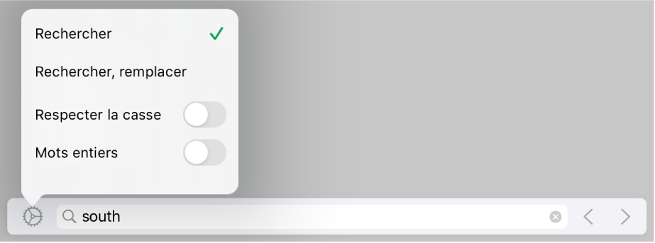 Le menu d'options de recherche avec Rechercher, Rechercher,remplacer, Respecterlacasse et Motsentiers.