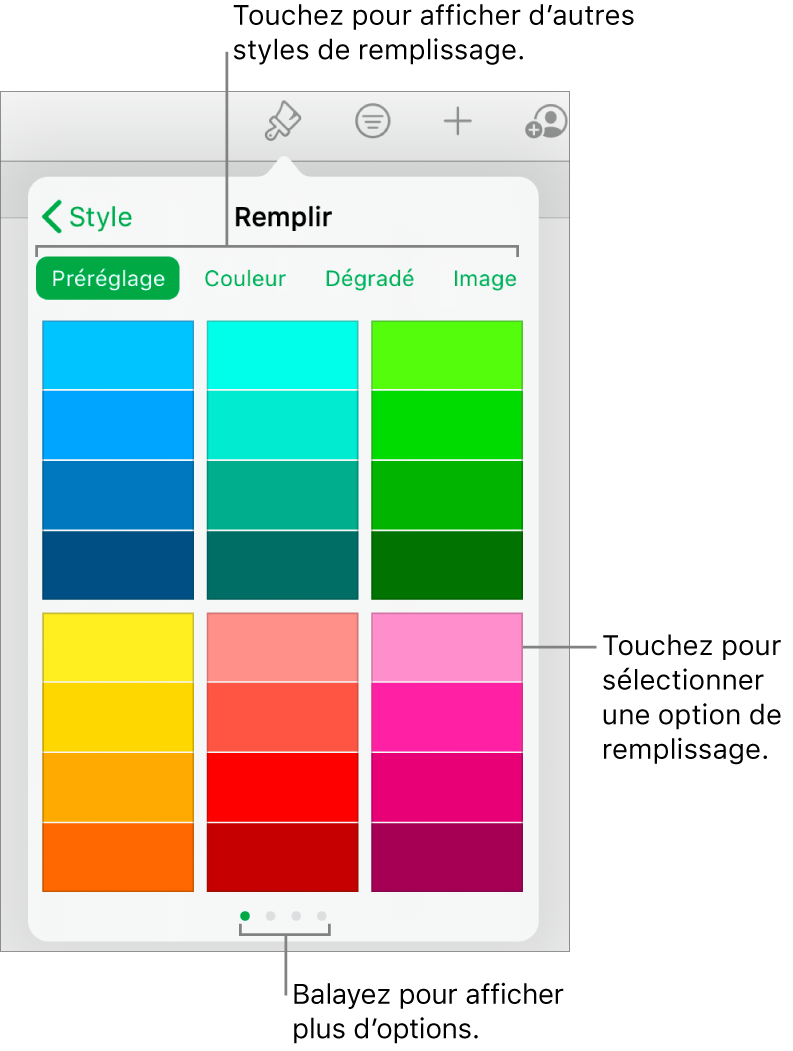 Options de remplissage de l'onglet Style du bouton Format.