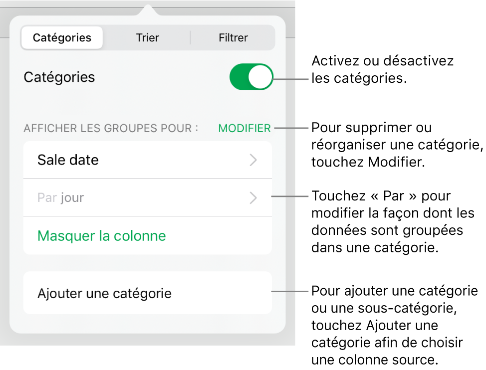 Le menu Catégories pour iPad, avec des options permettant de désactiver les catégories, supprimer des catégories, regrouper des données, masquer une colonne source et ajouter des catégories.