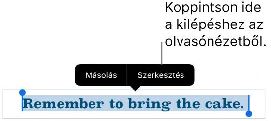 Egy kijelölt mondat, amely fölött a Másolás és Szerkesztés gombokat tartalmazó Helyi menü látható.