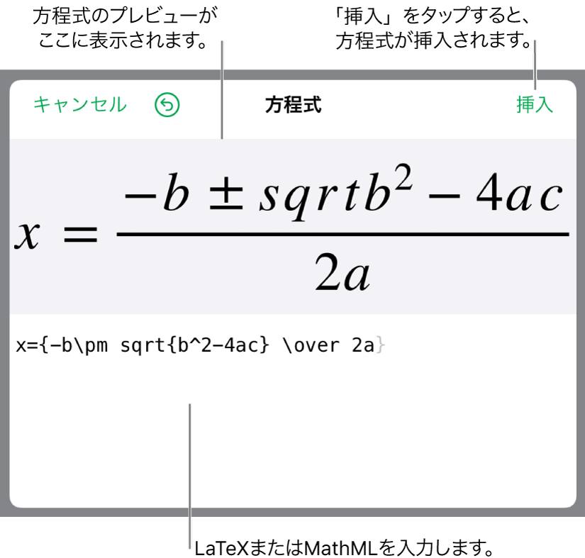 LaTeXを使用して書き込まれた二次方程式の解の公式が「方程式」フィールドに、公式のプレビューがその下に表示されます。