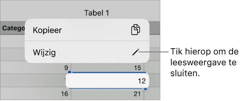 Er is een tabelcel geselecteerd en erboven staat een menu met de knoppen 'Kopieer' en 'Wijzig'.