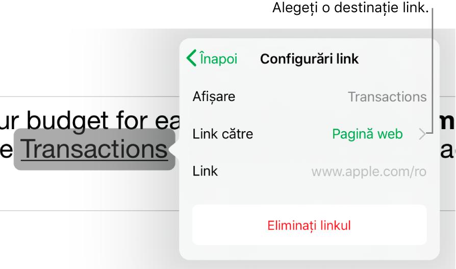 Comenzile din Configurări link cu câmpuri pentru Afișare, Link către (este selectată opțiunea Pagină web) și Link. În partea de jos se află butonul Eliminați linkul.